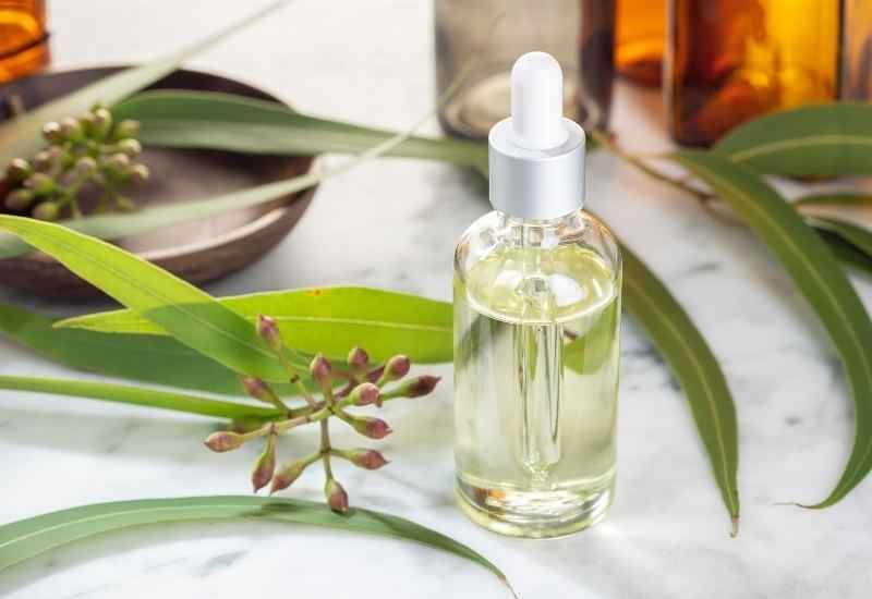 Cedarwood Essential Oils for depression