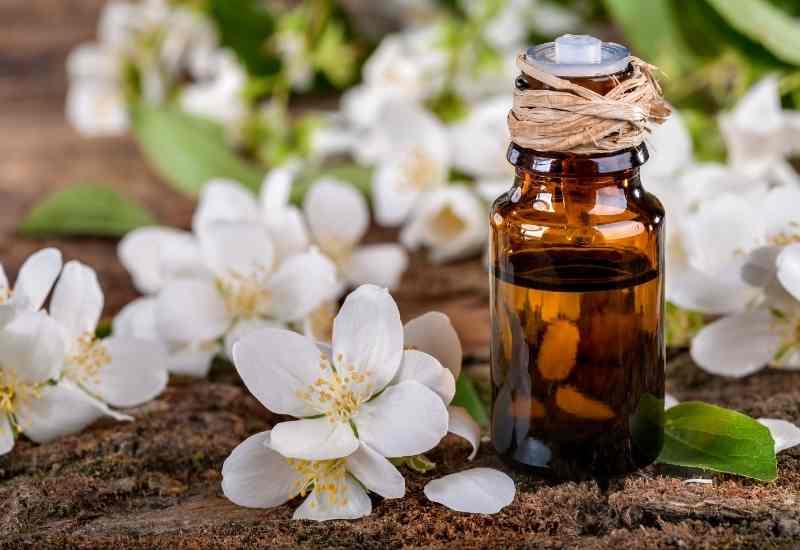 Jasmine Essential Oils for depression